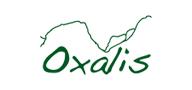 oxalis.png